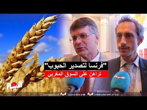 """""""فرنسا لتصدير الحبوب"""" تراهن على السوق المغربي"""