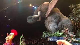 Festival of The Lion King   Full Show POV   Harambe Theater at Disney's Animal Kingdom