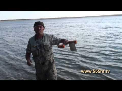 Лов чехони на кораблик