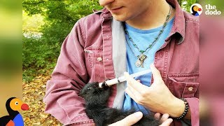 Squirrel Still Visits Man Who Rescued Him As a Lost Baby | The Dodo