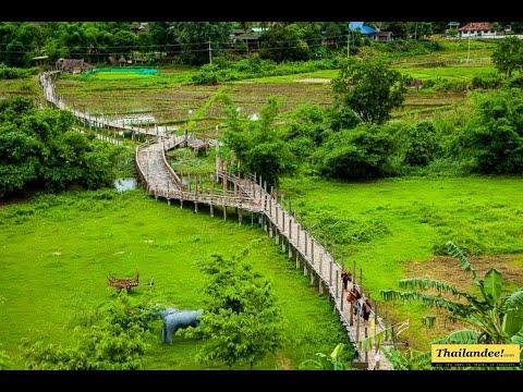 pont en bambou su tong pae