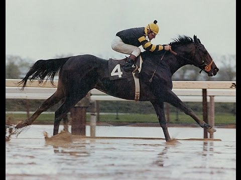 Seattle Slew Death