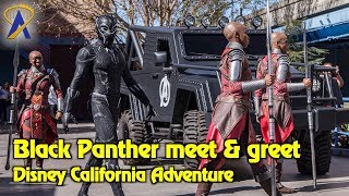 Meet Black Panther and the Dora Milaje at Disney California Adventure