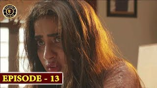 Gul-o-Gulzar | Episode 13 | Top Pakistani Drama