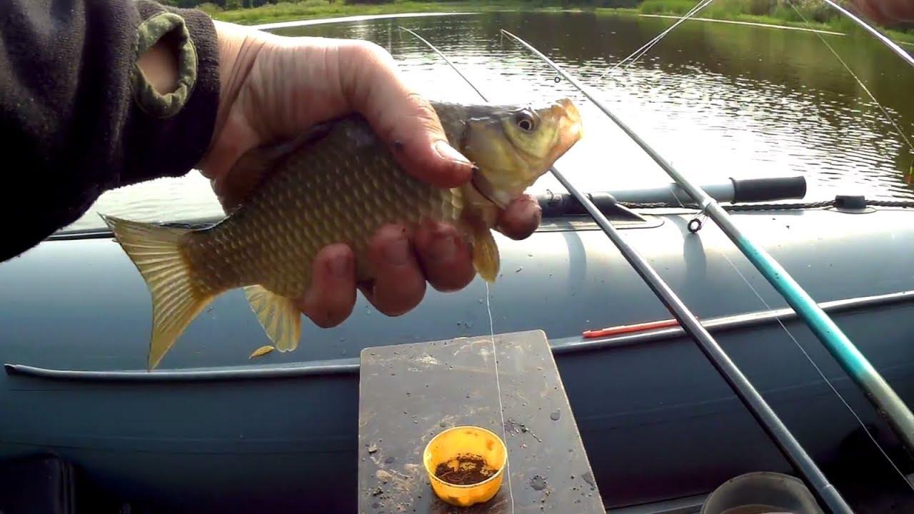 Карась - поплавочная рыбалка на карася