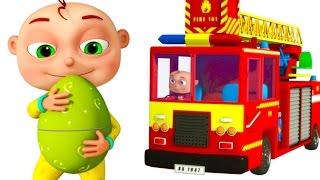 Five Little Babies Driving Transport Vehicles | Surprise Giant Eggs For Kids | Zool Babies