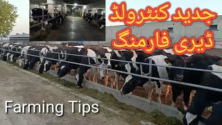 Controlled dairy farming in Pakistan|Controlled dairy shed||Most modern dairy farm in Punjab